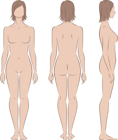 outline drawing: illustration of women s figure  Front, back, side views  Silhouettes Illustration