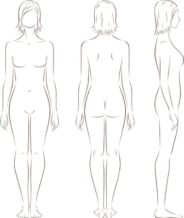 anatomie mens: illustratie van vrouwen s figuur Voorkant, achterkant, zijkant uitzicht Silhouettes