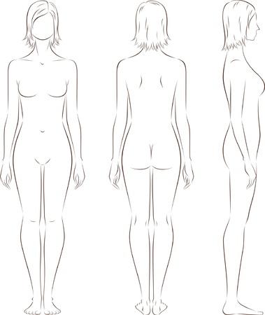 dessin au trait: illustration de la figure du Front de la femme, le dos, les vues lat�rales Silhouettes