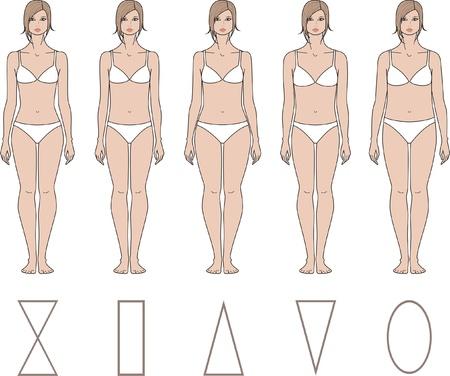 corps femme nue: Vector illustration de femmes de chiffres différents types