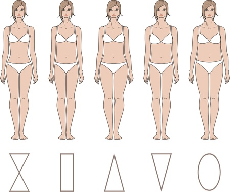 naked female body: Vector illustration of women s figures  Different types