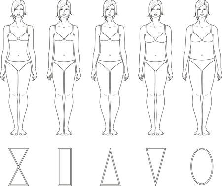 Vector illustration of women s figures  Different types