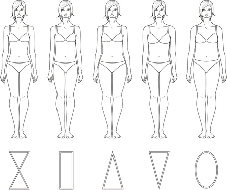Vector illustration of women s figures  Different types