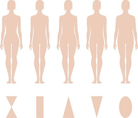 Ilustración vectorial de las mujeres s cifras diferentes siluetas tipos Foto de archivo - 20146240