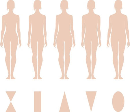 Vector illustratie van vrouwen en cijfers Verschillende types Silhouetten