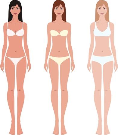 Vector illustration of women s fashion figures in underwear