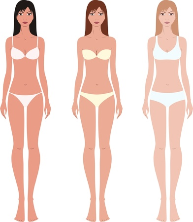 bra: Vector illustration of women s fashion figures in underwear