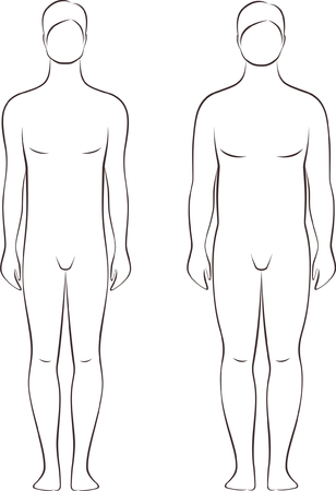 Vector illustration of male figure  Different body types  Silhouette Vector