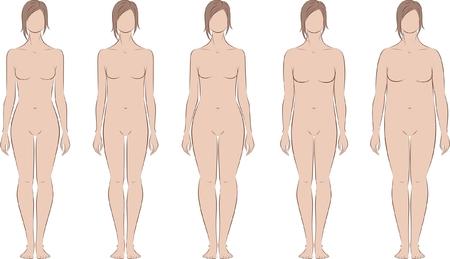 corpo umano: Illustrazione vettoriale di figura femminile Diversi tipi di corpo Silhouette Vettoriali