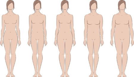 proportion: Vector illustration of female figure  Different body types  Silhouette Illustration