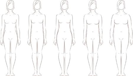 cabeza femenina: Ilustraci�n vectorial de la figura femenina Diferentes tipos de cuerpo de la silueta