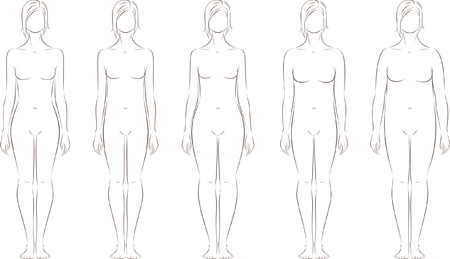 outline drawing: Vector illustration of female figure  Different body types  Silhouette Illustration