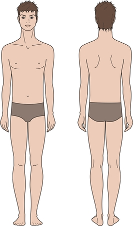 Vector illustration of male fashion figure  Front and back views Illustration