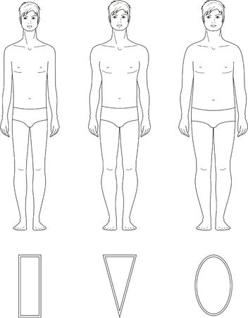 male figure: illustration of male figure  Different body types Illustration