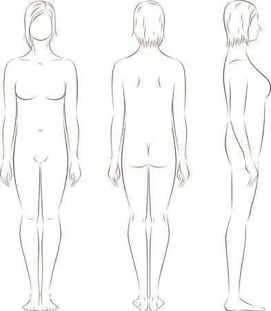 cuerpos desnudos: Ilustración vectorial de la figura femenina frontal, posterior, lateral ve la silueta