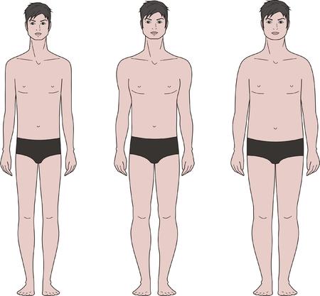 Ilustración vectorial de diferentes tipos de figuras corporales masculinas Foto de archivo - 29300560