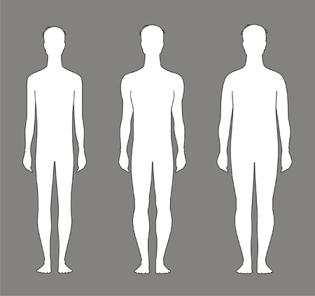 naked male: Vector illustration of male silhouette  Different body types Illustration