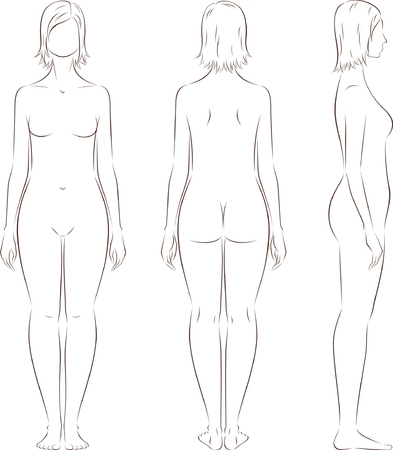 anatomy naked woman: Vector illustration of female figure. Body type with increased fat deposition in the lower body. Front, back, side views. Silhouette Illustration