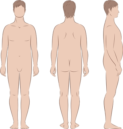 nude male body: Vector illustration of male silhouette. Body type with increased fat deposition in the abdominal area. Front, back, side views