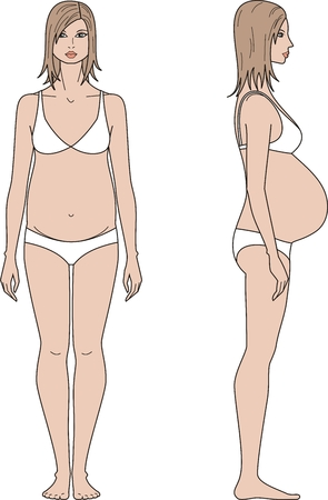Vector illustration of pregnant womens figure. Front and side views Vector