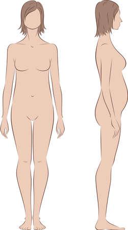 silueta humana: Ilustración del vector de la silueta de mujer embarazada. Proporciones en 2 trimestre. Vistas frontales y laterales Vectores