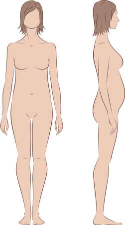 proportions: Vector illustration of pregnant female silhouette. Proportions in 2 trimester. Front and side views Illustration