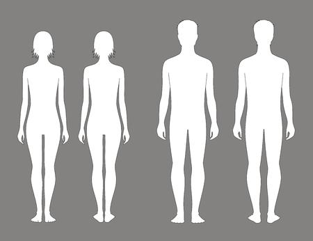 human figure: Ilustración vectorial de adolescentes masculinos y femeninos figura a la edad de 15 años. Vistas frontales y traseros Vectores
