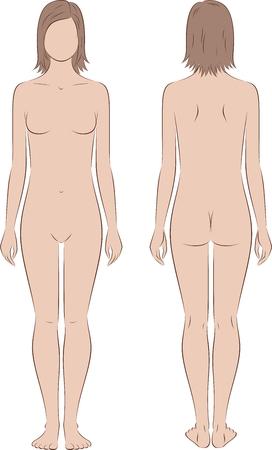 corpo umano: Illustrazione vettoriale di adolescenti figura femminile, all'età di 15 anni. vista anteriore e posteriore