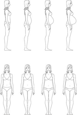 silueta humana: ilustración de la figura mujeres embarazadas