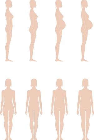 cabeza de mujer: Ilustraci�n de la silueta femenina embarazada