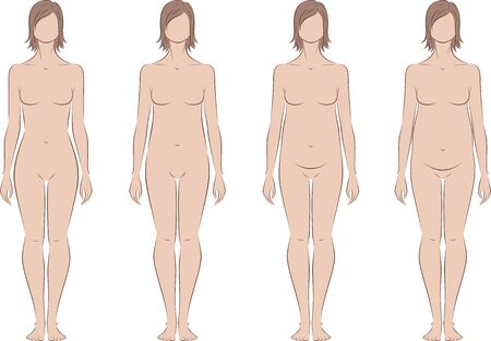 proportions: Vector illustration of pregnant female silhouette. Change in proportions from 1 trimester to birth. Front view