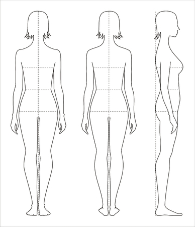 Vector illustration of women's body proportions and measurements for clothing design and sewing.
