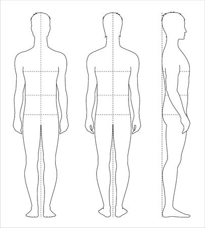 Ilustración vectorial de las proporciones del cuerpo de los hombres y las medidas para el diseño de prendas de vestir y costura. Foto de archivo - 77496359