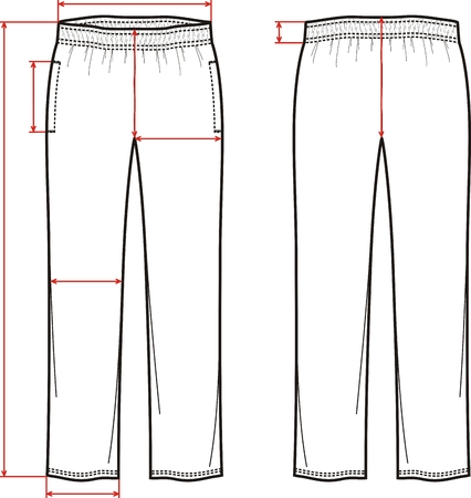Vector illustration of sport pants Front and back
