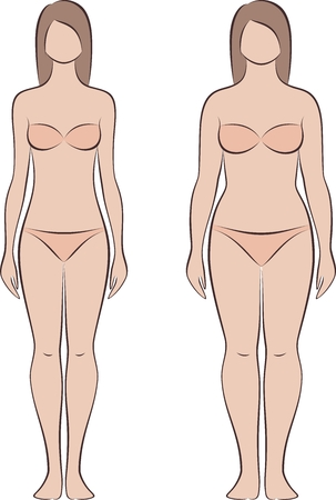 Vector illustration of womans figure. Different body types Illustration