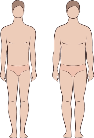 Vector illustration of mans figure. Different body types Illustration