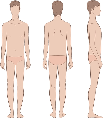 Vector illustration of mans figure. Body type with poorly developed fat deposition and musculature. Front, back, side Illustration