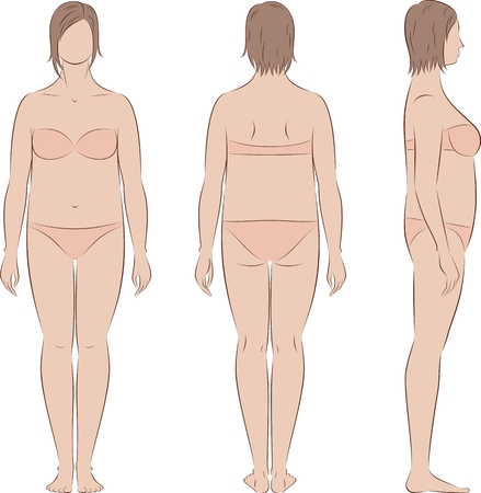 Vector illustration of women's figure. Front, back, side. Body type with increased fat deposition and musculature in the abdominal area Illustration