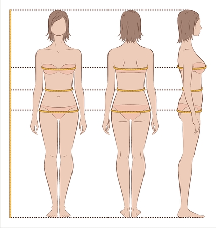 Vector illustration of womens body measurements for clothing design and sewing. Front, back side views