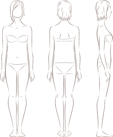 Vector illustration of womens figure. Front, back, side. Body type with poorly developed fat deposition and musculature
