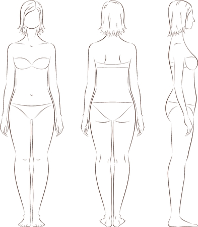 Vector illustration of womens figure. Front, back, side. Body type with increased fat deposition and musculature in the low part Çizim