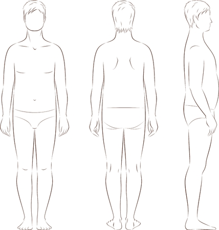 Vector illustration of man's figure. Body type with increased fat deposition and musculature in the abdominal area. Front, back, side