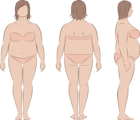 Vector illustration of womens figure. Body type and proportions with increased fat deposition. Front, back, side