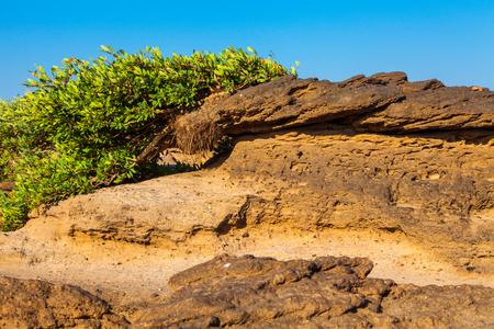 Unseen Thailand grand canyon sam pan bok at ubonratchathani Stock Photo