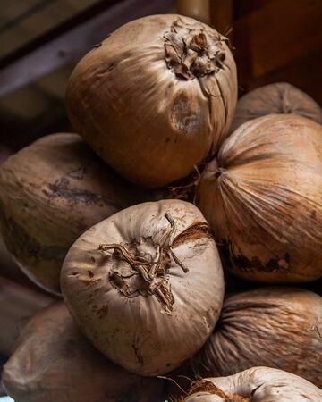 coconut fruit Stock Photo