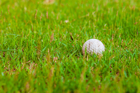 Golf ball on green grass field