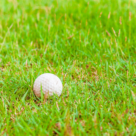 Golf ball on green yard