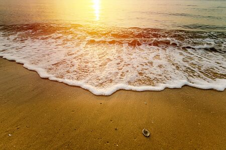 Beautiful tropical beach and sea wave on sunrise background Imagens - 134765161
