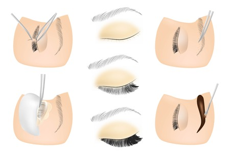 Eyelash cosmetic Procedures: Staining, Curling, Laminating,Extension for Lashes, shape eyebrows paints eyebrows