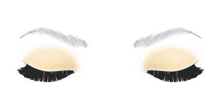 Black False eyelashes. Mascara single decorative element